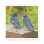 Baby Barn Swallows Nature Bird Photography Napkin