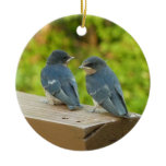 Baby Barn Swallows Nature Bird Photography Double-Sided Ceramic Round Christmas Ornament