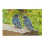 Baby Barn Swallows Nature Bird Photography Placemat