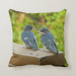 Baby Barn Swallows Nature Bird Photography Throw Pillow