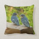 Baby Barn Swallows Nature Bird Photography Throw Pillow