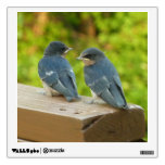 Baby Barn Swallows Nature Bird Photography Wall Sticker