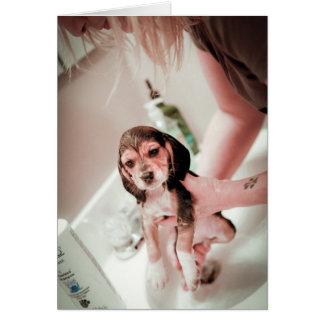 Baby Beagle Bathtime Greeting Card