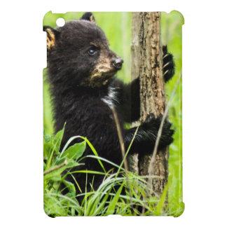 Baby Bear iPad Mini Cover