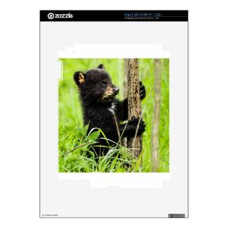 Baby Bear Skin For The iPad 2