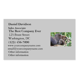 Baby Beaver and Family Photo Double-Sided Standard Business Cards (Pack Of 100)