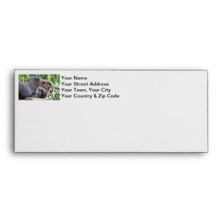 Baby Beaver and Family Photo Envelope