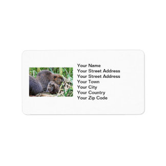 Baby Beaver and Family Photo Label