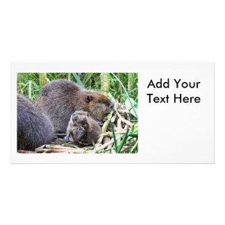 Baby Beaver and Family Photo Photo Card