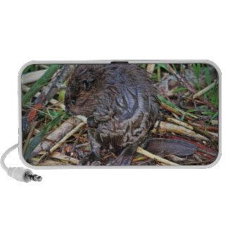 Baby Beaver Photo Portable Speaker