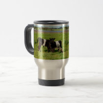 Baby Belted Galloway Cows In Country, Travel Mug