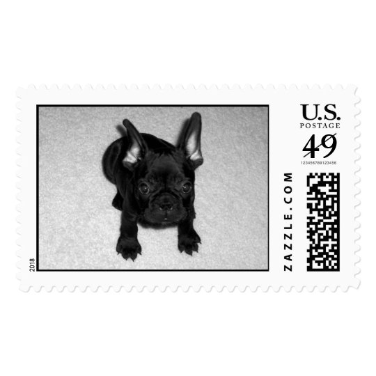 Baby Benny Postage