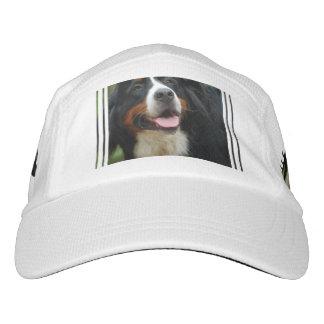Baby Bernese Mountain Dog Headsweats Hat