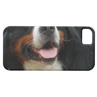 Baby Bernese Mountain Dog iPhone SE/5/5s Case