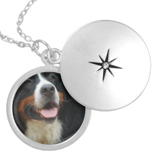 Baby Bernese Mountain Dog Silver Plated Necklace