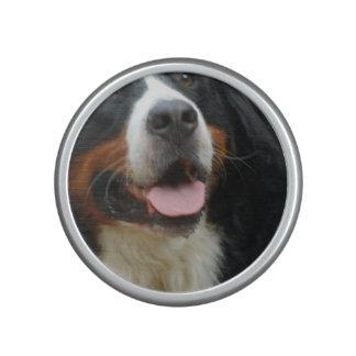 Baby  Bernese Mountain Dog Speaker