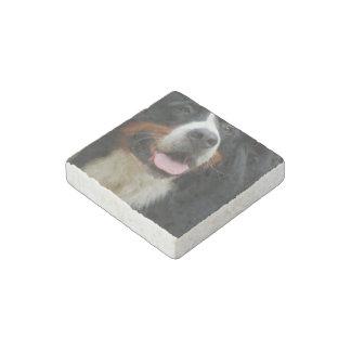 Baby  Bernese Mountain Dog Stone Magnet