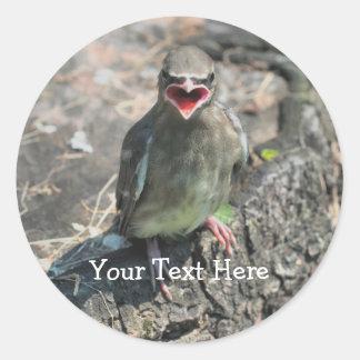 Baby Bird Nature Photography Sticker