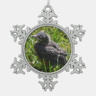 Baby Bird Ornament