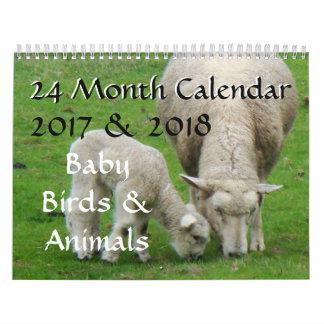 Baby Birds & Animal Wildlife Photography 2017 2018 Calendar