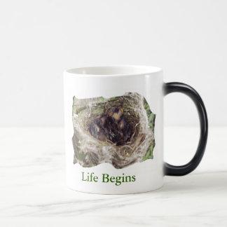 Baby Birds Magic Mug