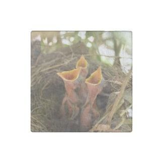 Baby Birds Stone Magnet
