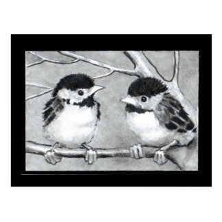 BABY BIRDS TALKING/TWEETING POSTCARD