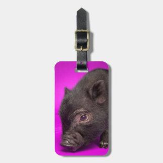 Baby Black Pig Luggage Tag