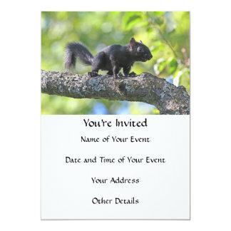 Baby Black Squirrel 5x7 Paper Invitation Card