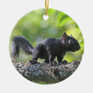 Baby Black Squirrel Ceramic Ornament