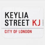 Keylia Street  Baby Blanket
