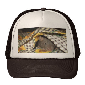 BABY BLANKIE RAT HAT