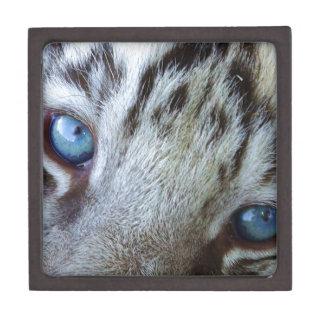 Baby Blue Eyes Gift Box