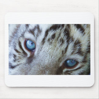 Baby Blue Eyes Mouse Pad