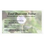 Baby Blue Speedwell Double-Sided Standard Business Cards (Pack Of 100)