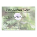 Baby Blue Speedwell Large Business Cards (Pack Of 100)
