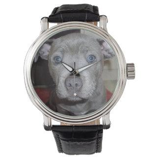 Baby_Blue_Staffordshire_Bull_Terrier_Watch, Wristwatch