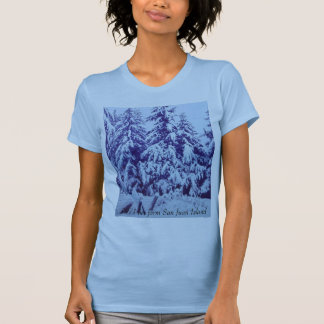 Baby blue women's t-shirt with snow scene.