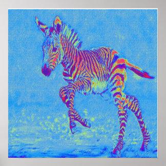 baby blue zebra running poster