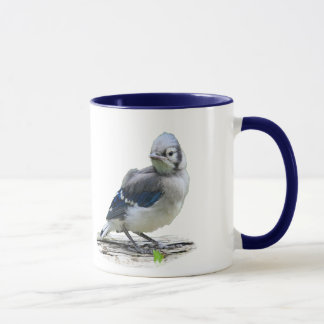 Baby Bluejay Cup #1