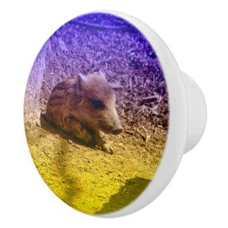 baby boar, blue ceramic knob