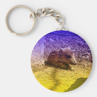 baby boar, blue basic round button keychain