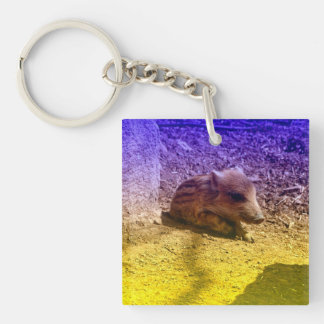 baby boar, blue Double-Sided square acrylic keychain