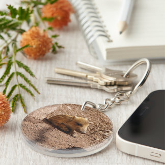 baby boar Single-Sided round acrylic keychain