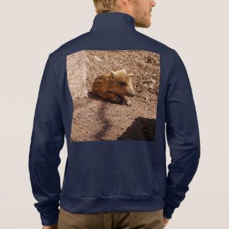 baby boar jacket