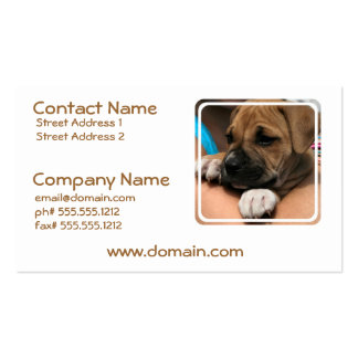 Baby Boxer Business Cards