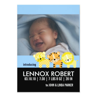 Baby Boy Birth Announcement Photo Cards