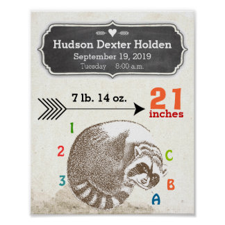 Baby Boy Birth Stats Cute Raccoon and Arrow Poster