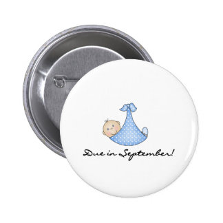 Baby Boy  Due in September Pinback Button