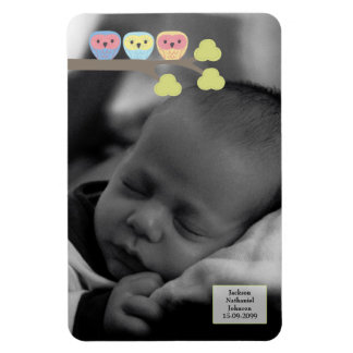 Baby Boy Owls  6x4 Photo Magnet Keepsake